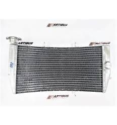 Радиатор охлаждения для Honda CBR929RR 00-01